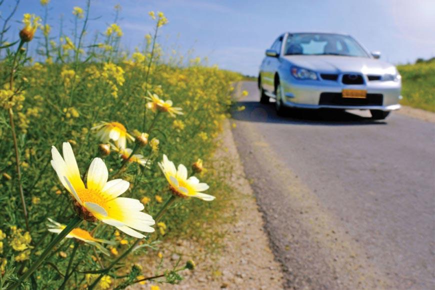 Así afectará la primavera a tu coche
